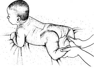 Рефлекс ползания в 2 месяца у ребенка