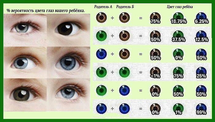 Таблица совместимости глаз родителей и ребенка