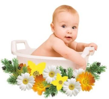 В каких травах можно купать грудничка
