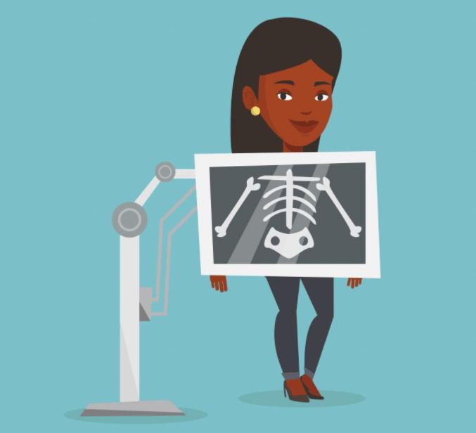 Рентген показывает строение внутренних органов