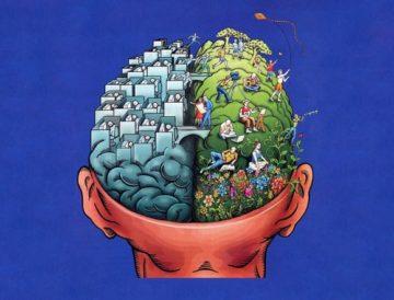 мозг ребенка развивается по своим законам