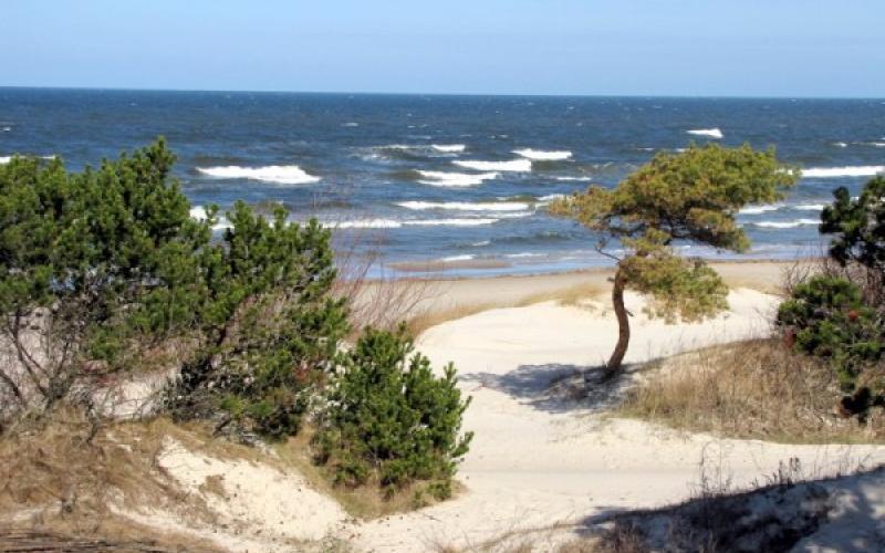 Отдых на Балтике для беременных